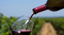 Amazing Health Benefits of Red Wine