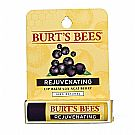 Burt's Bees Rejuvenating Lip Balm