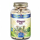 Nature's Herbs Ginger Root