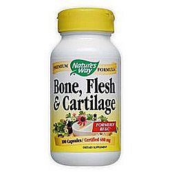 Bone Flesh and Cartilage