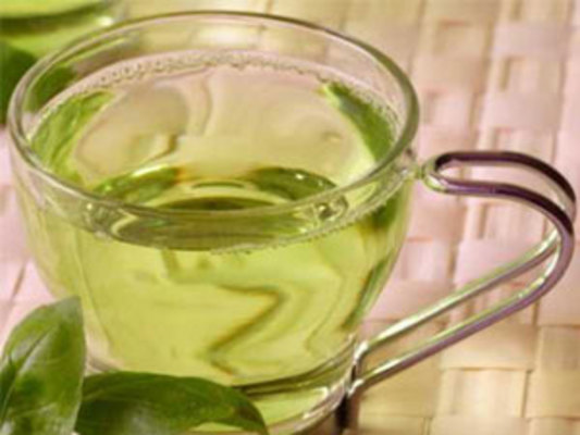 EGCG and Green Tea for Weight Loss - eVitamins com