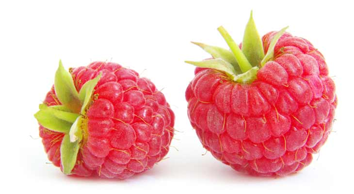 These products include pure raspberry ketone and ingredients like green tea extract to help you shed unwanted pounds. Find out why these supplements have everyone on the raspberry wagon.