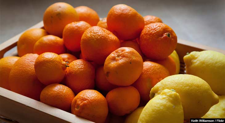 Vitamin C is the primary defense for most people when it comes to cold and flu season.  See how much of this powerful antioxidant you need to help keep yourself healthy this fall.