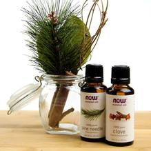 Pine Needle and Clove essential oils