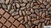 Cocoa Vs Cacao - What To Know About Chocolate