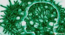 6 Ways to Boost Brain Health