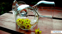 4 Benefits of Chamomile
