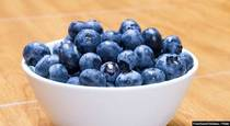 Discover the Many Benefits of the Blueberry