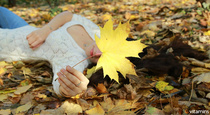 10 Tips for Staying Safe, Healthy, Active This Fall