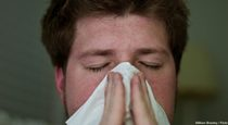 Herbs for Cold and Flu Prevention, Treatment