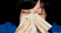 Natural Remedies for Hay Fever Symptoms
