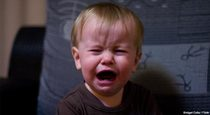 Probiotics Can Stop Colicky Babies from Crying