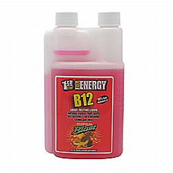 1st Step for Energy B 12