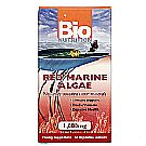 Bio Nutrition Red Marine Algae
