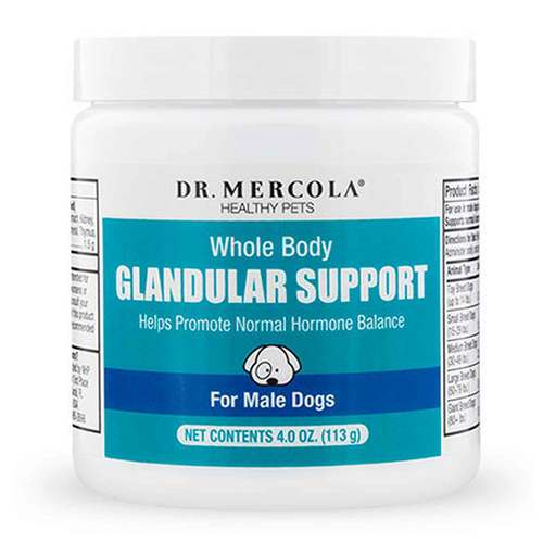 Dr Mercola Whole Body Glandular Support for Pets - Male Dogs 113 g - 349338_front.jpg