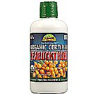Dynamic Health Laboratories Organic Sea Buckthorn Juice Blend