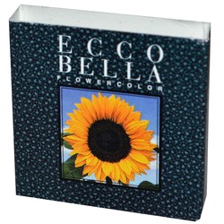 Ecco Bella Beauty Powder Eyeliner
