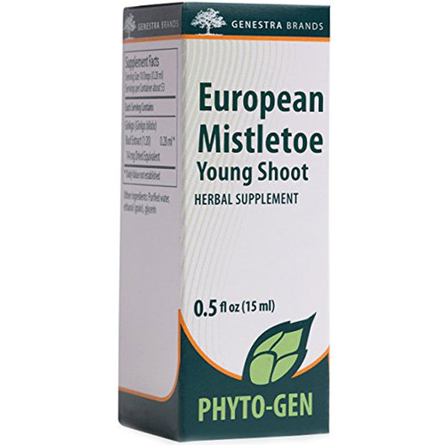 European Mistletoe Young Shoot