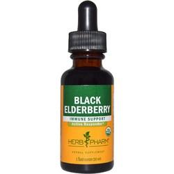 Herb Pharm Black Elderberry Extract
