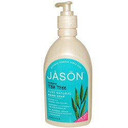 Jason Natural Cosmetics Purifying Hand Soap
