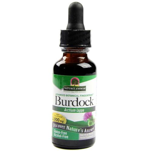 Nature's Answer Burdock Root Alcohol Free - 1 fl oz - 1937_1.jpg