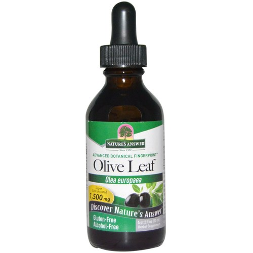 Nature's Answer Oleopein Olive Leaf AF Alcohol Free - 2 oz - 1981_01.jpg
