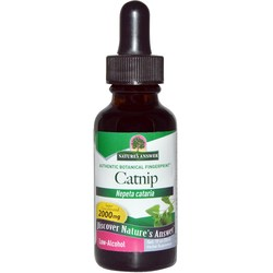 Nature's Answer Catnip Herb