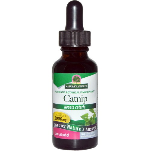 Nature's Answer Catnip Herb  - 1 fl oz - 22949_01.jpg