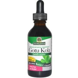 Nature's Answer Gotu Kola Herb
