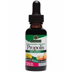 Nature's Answer Propolis Resin Extract