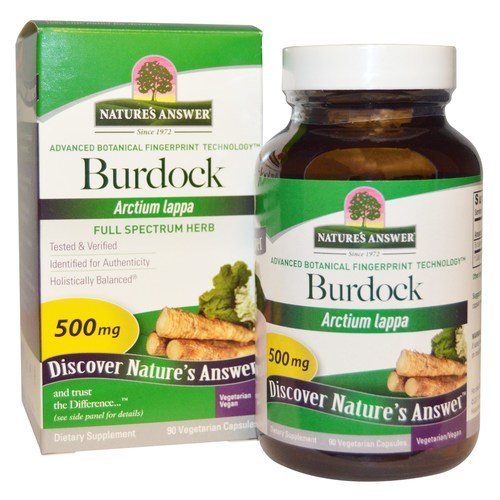 Burdock Root 500 mg