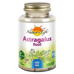 Nature's Life Astragalus Root