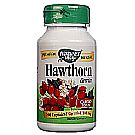 Hawthorn Berries 510 mg