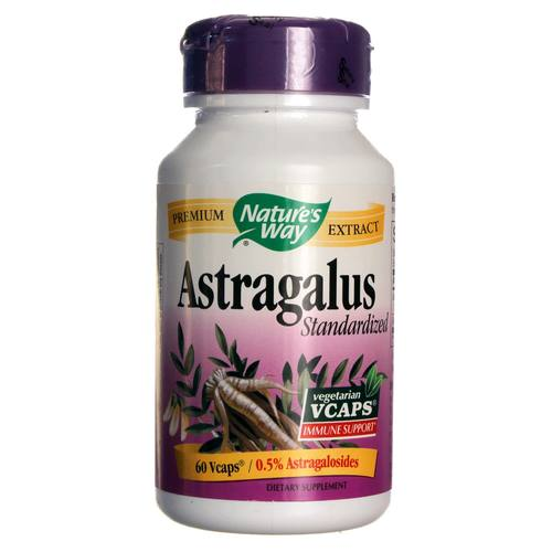 Astragalus Standardized