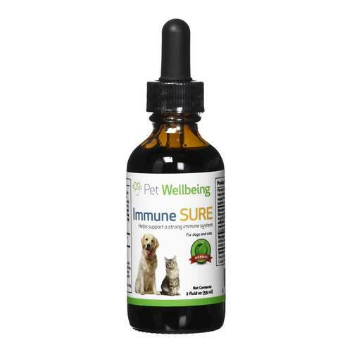 Pet Wellbeing Immune SURE for Cats – 2 fl oz (59 ml)