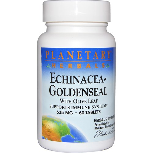 Echinacea Goldenseal with Olive Leaf 635 mg