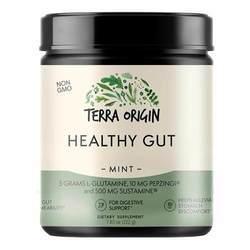 Terra Origin Healthy Gut Mint