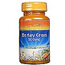 Thompson Barley Grass 500 mg
