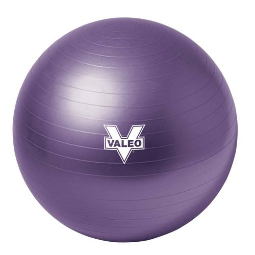 Burst Resistant Exercise Body Ball